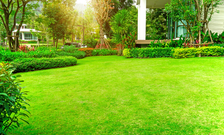 top lawn maintenance tips for enhancing the look of your home's exterior