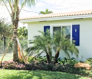purple panel shutters with pineapple cutouts on white stucco tropical homes