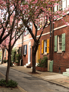 Street with colorful yellow, mint, and navy shutters on brick row homes.